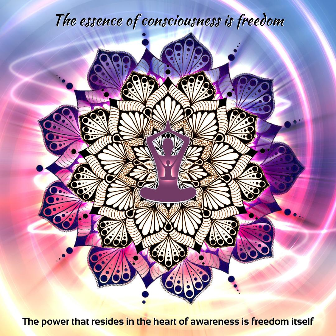 The Essence of consciousness is freedom
